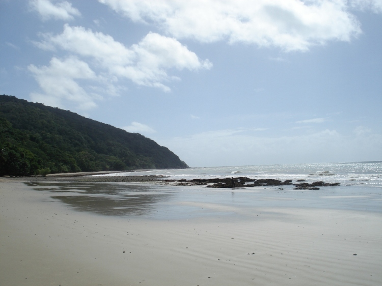 Beachside on the Daintree